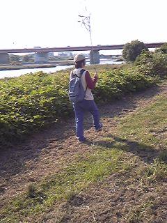 秋の多摩川散歩〜クサカリマサオ編