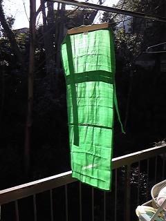 緑のシルクふんどし