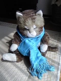 青いマフラーの猫