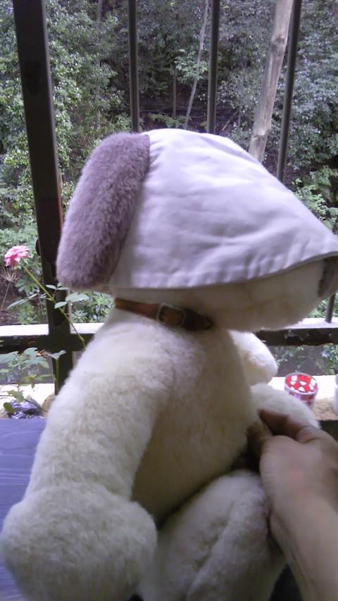 耳が出る帽子